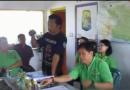 Testimoni Pupuk Organik Cair GDM Tanaman Padi